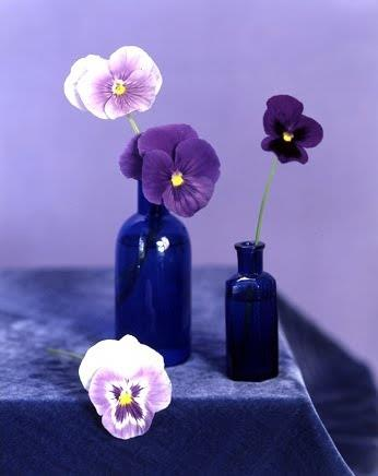 pansies and blue glass