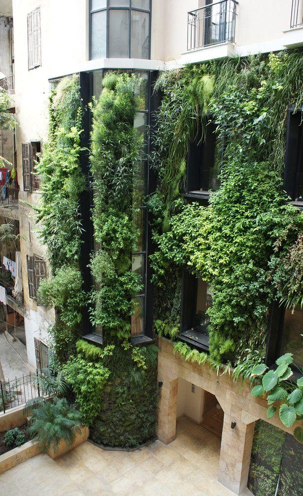 Gsky Living Green Walls: Brian Edward Millett